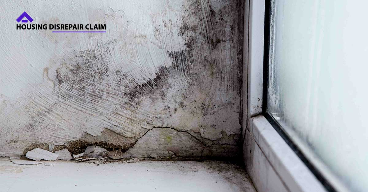 Housing Disrepair Problems
